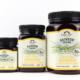 Rainbow Station Multifloral Manuka Honey